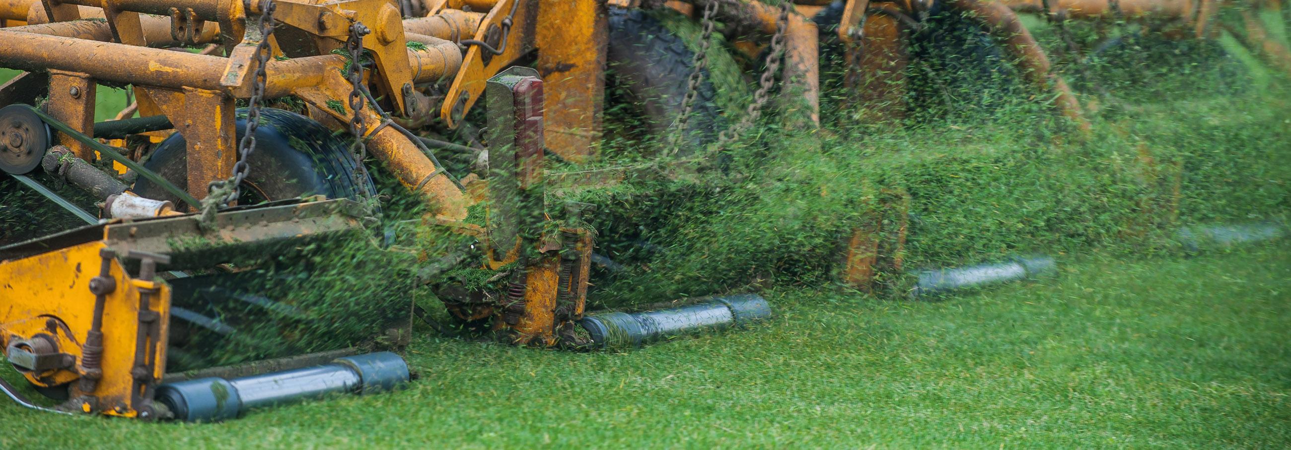 Oprollen graszoden