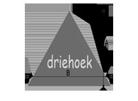 Oppervlakte berekenen - driehoek